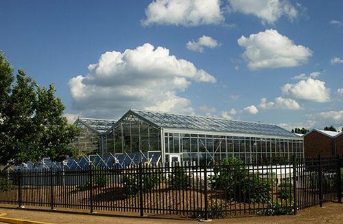 Greenhouse Operations